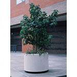 Indoor / Outdoor Planter