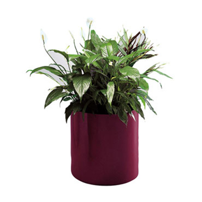 "Rubbermaid FGFGPM96BK Round Planter - Rimless, 9x6"" Fiberglass, Black"