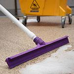 "Carlisle 3656768 20"" Floor Squeegee Head - Straight, Foam Rubber Blade, Purple"