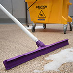 "Carlisle 3656868 24"" Floor Squeegee Head - Straight, Foam Rubber Blade, Purple"
