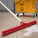 """Carlisle 4156805 24"""" Floor Squeegee Head w/ Double Foam Rubber Blade, Red"""