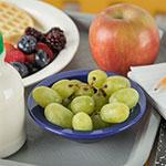 "Carlisle PCD30550 3.5"" Round Fruit Bowl w/ 5-oz Capacity, Polycarbonate, Dark Blue"