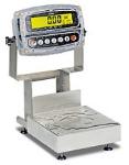 Detecto CA8-15KG-190 Wash-Down Bench Scale w/ ColorZONE, 15 kg x .001-kg Capacity