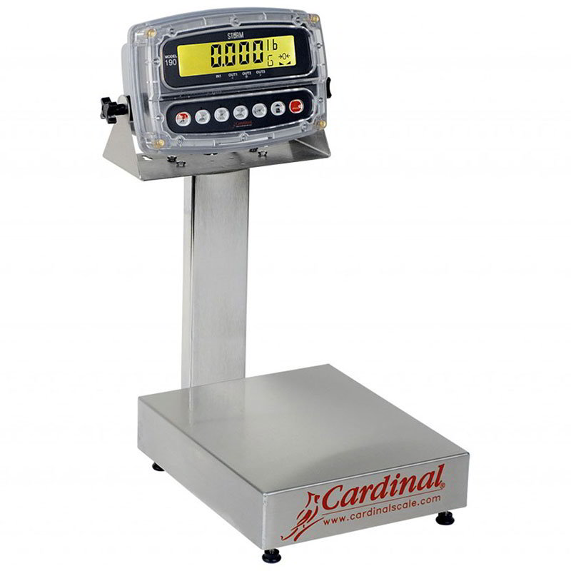 Detecto EB-300-190 Digital Bench Scale, LCD Display, lb/kg/g/oz, 300 x .1-lb, 24 x 20-in