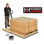 Detecto FH-544F-204 Scale Platform w/ 204 Weight Indicator, 4 x 4-ft, 5000 x 1-lb