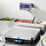 Edlund WRD-10H Wireless Remote Pizza Portion Scale, 10.0 lb. x 0.005 lb, Switch