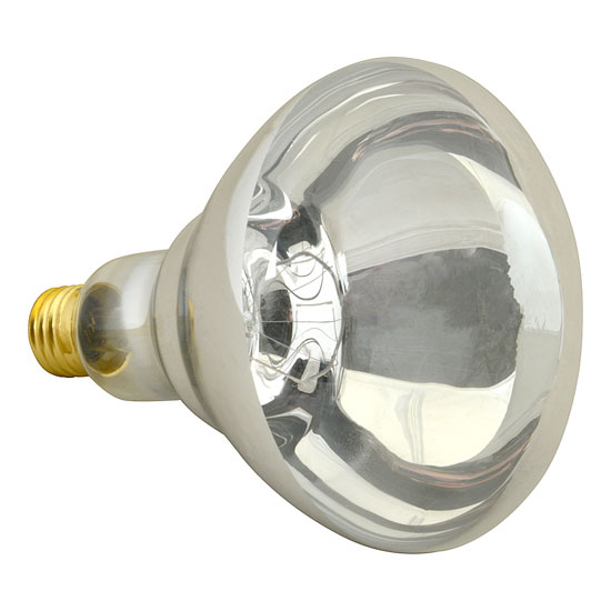 Franklin MacHine 253-1121 Infrared Bulb - Non-Coated, Clear 250W