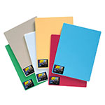 "Tomlinson 1032805 Cutting Board w/ Microban, 12 x 18"", NSF, Multi-Color"