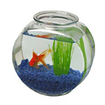 Anchor 70/8 2-gal Fish Bowl, Crystal