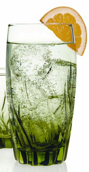 Anchor 81298L8 17-oz Large Tumblers w/ Unique Design & Appearance, Fern