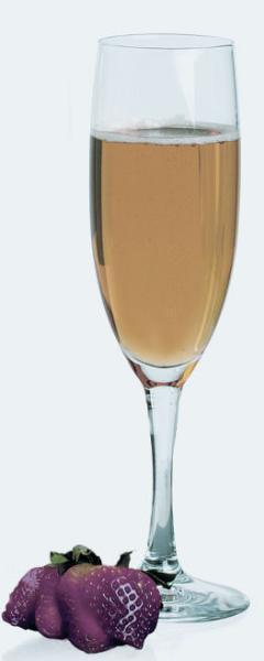 Anchor 87546L10 6-oz Everton Champagne Flute