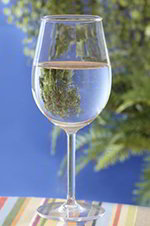 GET SW-1446-PC-CL 15-oz Wine Glass, Clear Polycarbonate