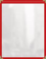 Risch TES5-1/2X8-1/2 RD