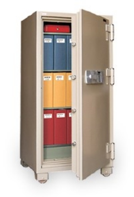 Mesa Safe MFS 160C TAN Fire Safe, 63 x 31.5 x 25-in, 12.2-cu ft, Combination, Tan