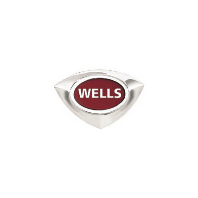 "Wells 22109 1"" Perforated Bottom Strainer Plate for RCP-300 & ICP-300"