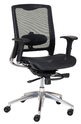 Ergocraft ECO8.8 Eco Series Mesh Task Chair w/ Adjustable Lumbar & Polished Aluminum Frame