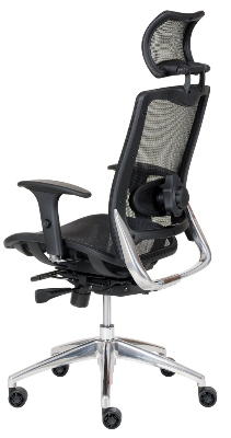 Ergocraft ECO-8.8-WHR Eco Series Mesh Task Chair w/ Adjustable Lumbar & Aluminum Frame, Headrest