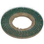 "Bissell 53304-01 17"" Pad Holder Brush for Lo-Boy Floor Machine, Green"