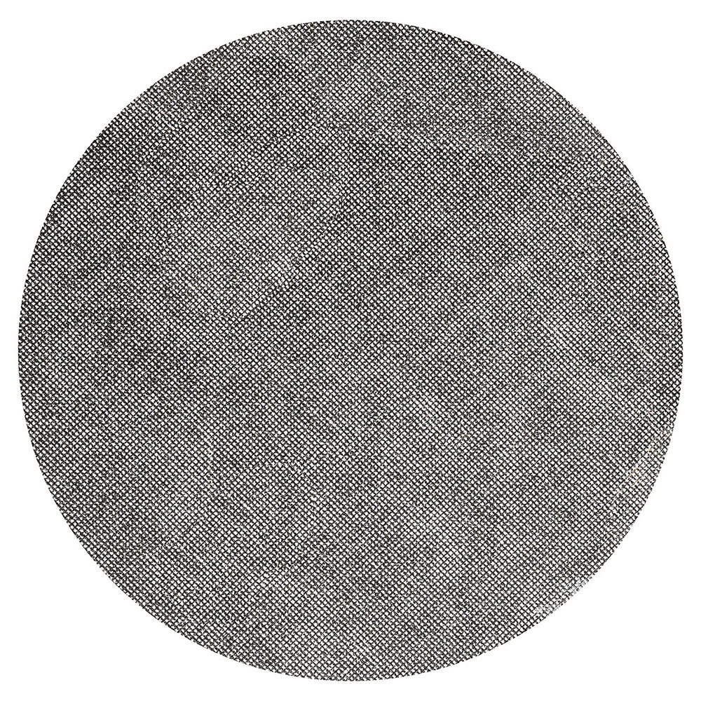 """Bissell SS17150 17"""" Sand Screen for BGLB9000, 150 Grit"""