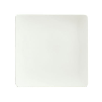 "Schonwald 9131524 9.25"" Porcelain Plate - Fine Dining Pattern, White"
